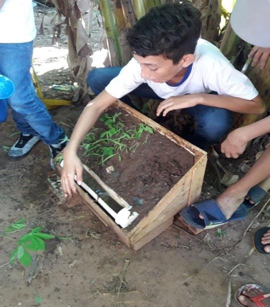 Preparação teórica com atividades prática Erosão do solo